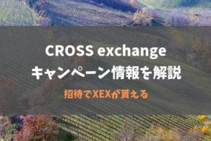 CROSS exchangeのキャンペーン情報を解説|招待でXEXが貰える