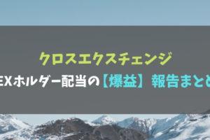 クロスエクスチェンジXEXホルダー配当の【爆益】報告まとめ