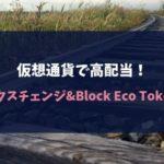 仮想通貨で高配当!クロスエクスチェンジ&Block Eco Tokenの評判