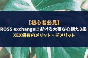 【初心者必見】CROSS exchangeにおける大事な心構え3条!XEX保有のメリット・デメリット