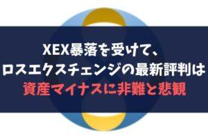 XEX暴落を受けて、クロスエクスチェンジの最新評判は?資産マイナスに非難と悲観