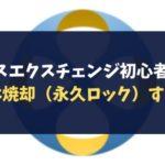 クロスエクスチェンジ初心者講座~XEXは焼却(永久ロック)すべき?~