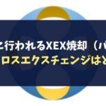 定期的に行われるXEX焼却(バーン)!今後クロスエクスチェンジはどうなる